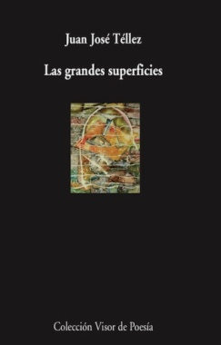 Las grandes superficies