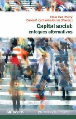 Capital social: enfoques alternativos