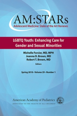 AM:STARs LGBTQ Youth: Enhancing Care for Gender and Sexual Minorities